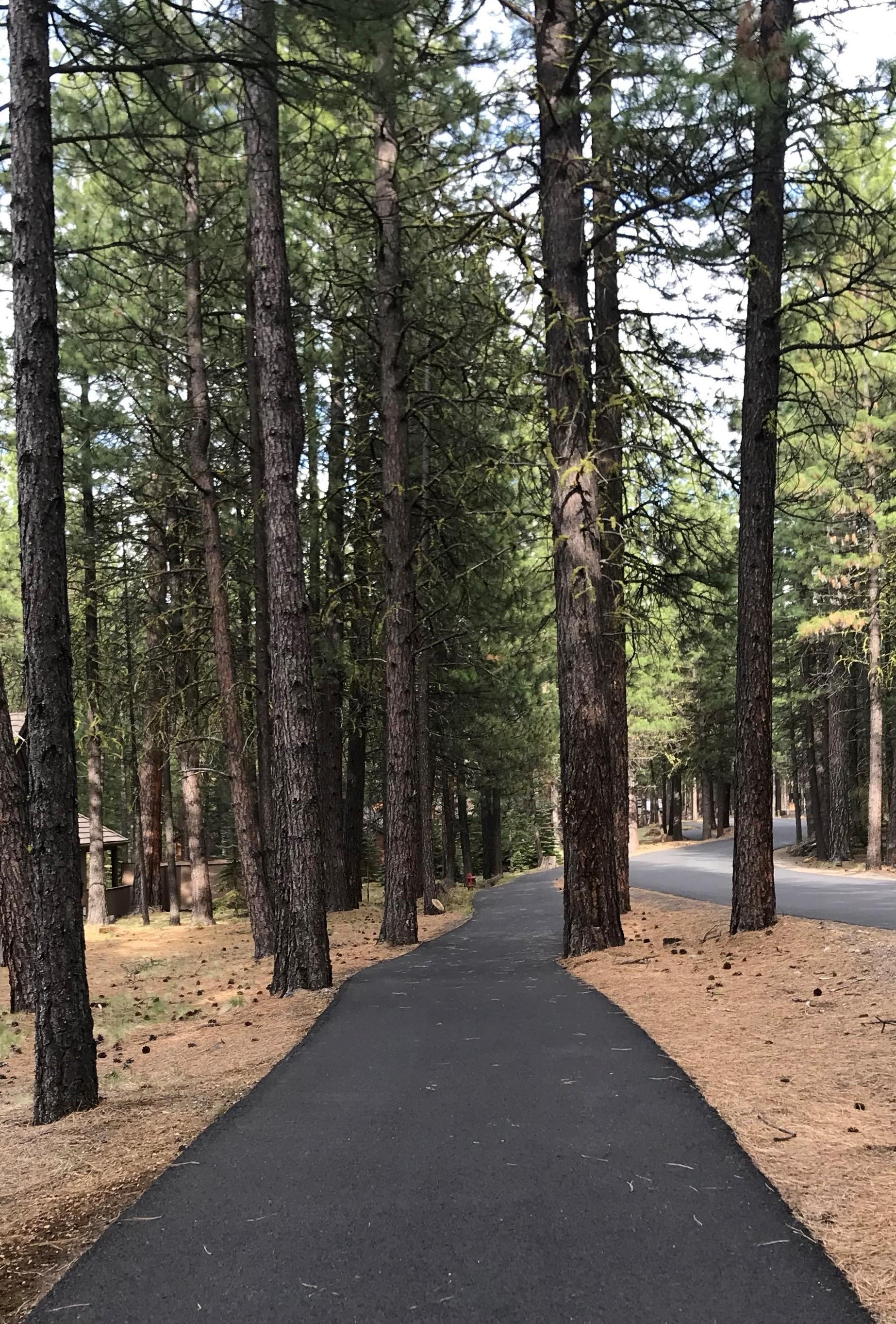 Bike Path, Image Credit: Bucky Fuchs
