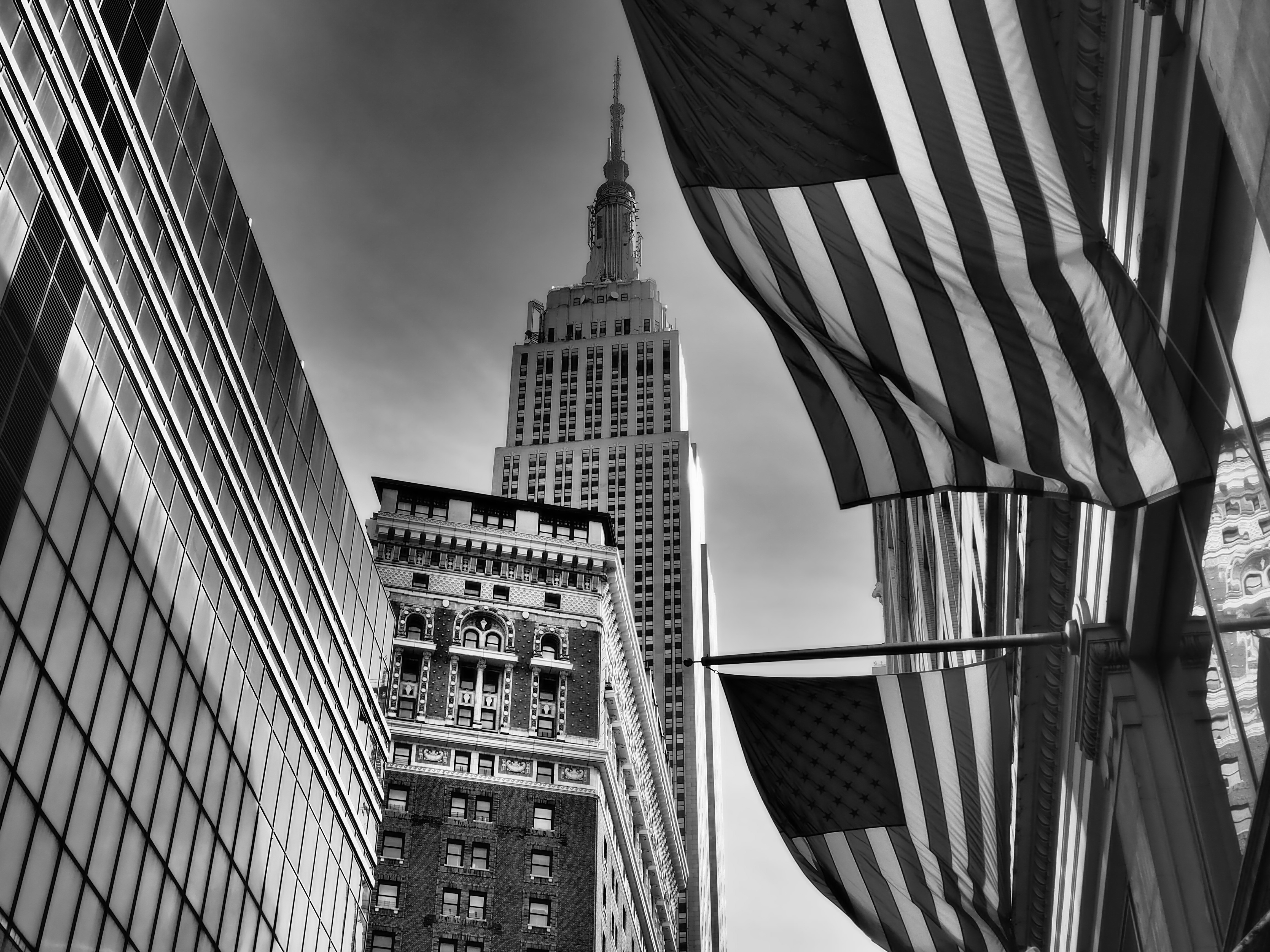 Credit: Dorothea Mursch-Edlmayr, NY