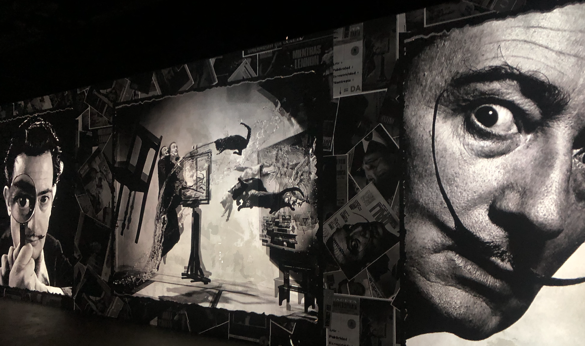 Multiple pictures of Dali