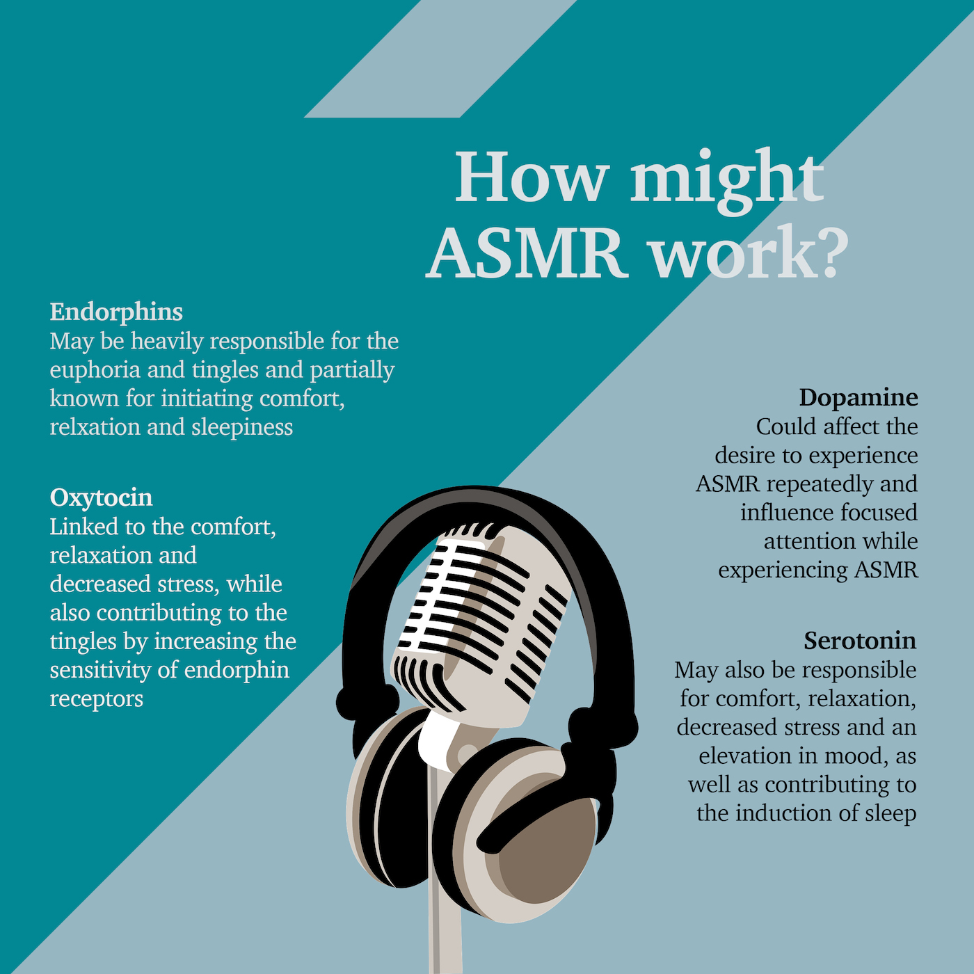 Information from ASMR University – Origin Theory of ASMR. Graphic Credit: Amy Thorpe