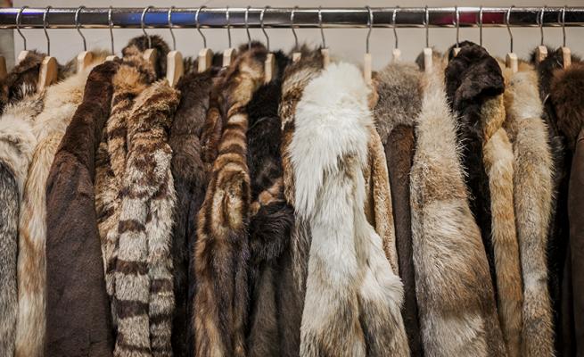 fur coats, secondhand fashion, secondhand clothing, thrift stores, thrift shops, fur coats, fur clothing, sustainable fashion, ethical fashion
