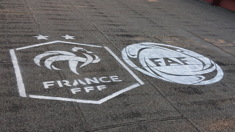 The logo of France National Football Team (Cr. Rosie Liu)